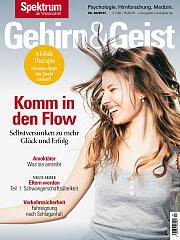 Gehirn&Geist: 4/2017