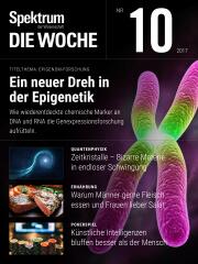 Spektrum - Die Woche: 10/2017