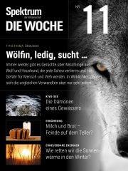 Spektrum - Die Woche: 11/2017