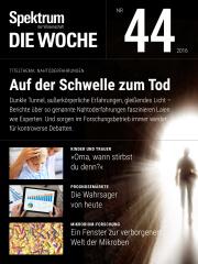 Spektrum - Die Woche: 44/2016