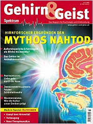 Gehirn&Geist: 3/03 PDF