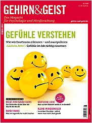 Gehirn&Geist: Juni 2008 PDF