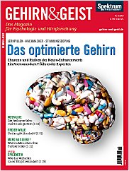 Gehirn&Geist: November 2009 PDF