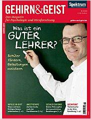 Gehirn&Geist: November 2010 PDF