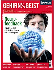 Gehirn&Geist: Oktober 2011 PDF