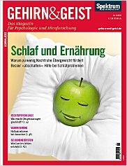 Gehirn&Geist: November 2011 PDF