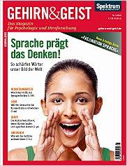 Gehirn&Geist: Juli/August 2011 PDF