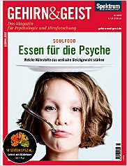 Gehirn&Geist: Mai 2012 PDF