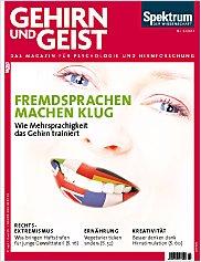 Gehirn&Geist: 6/2013 PDF