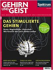 Gehirn&Geist: 6/2015 PDF