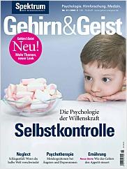 Gehirn&Geist: 11/2015 PDF