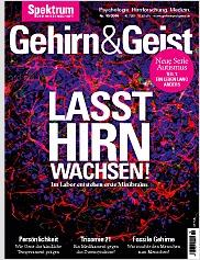 Gehirn&Geist: 10/2016 PDF