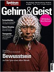 Gehirn&Geist: 2/2017 PDF