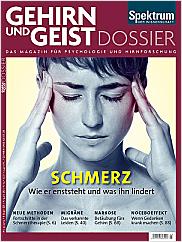 Gehirn&Geist: Dossier 3/2013 EPUB