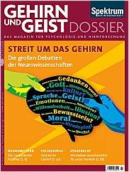 Gehirn&Geist: Dossier 1/2013 PDF