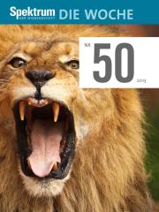 Spektrum - Die Woche: 50. KW 2013