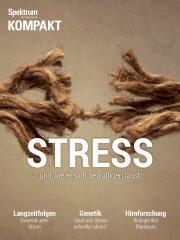 Spektrum Kompakt: Stress - und wie er sich bewältigen lässt
