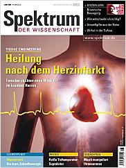 Spektrum der Wissenschaft: Juni 2005 PDF