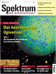 Spektrum der Wissenschaft: Mai 2004 PDF