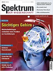 Spektrum der Wissenschaft: Juni 2004 PDF