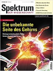 Spektrum der Wissenschaft: September 2004 PDF