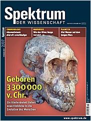Spektrum der Wissenschaft: Februar 2007 PDF