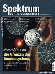 Spektrum der Wissenschaft: November 2007 PDF