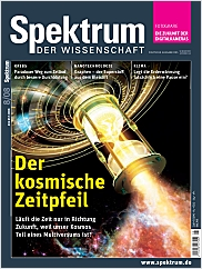 Spektrum der Wissenschaft: August 2008 PDF