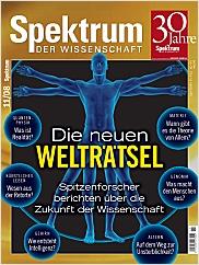 Spektrum der Wissenschaft: November 2008 PDF