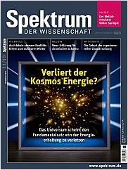 Spektrum der Wissenschaft: November 2010 PDF