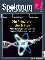 Spektrum der Wissenschaft: Juni 2011 PDF
