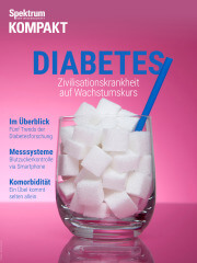 Spektrum Kompakt: Diabetes - Zivilisationskrankheit auf Wachstumskurs
