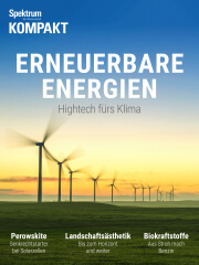 Spektrum Kompakt: Erneuerbare Energien - Hightech fürs Klima