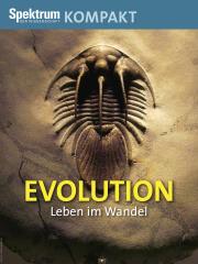 Spektrum Kompakt: Evolution - Leben im Wandel