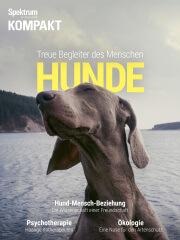 Spektrum Kompakt: Hunde - Treue Begleiter des Menschen
