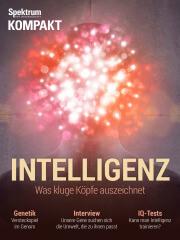 Spektrum Kompakt: Intelligenz - Was kluge Köpfe auszeichnet