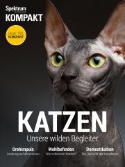 Spektrum Kompakt: Katzen - Unsere wilden Begleiter