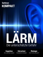 Spektrum Kompakt: Lärm - Die unterschätzte Gefahr