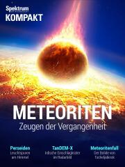 Spektrum Kompakt: Meteoriten - Zeugen der Vergangenheit