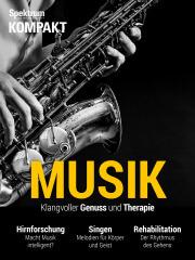 Spektrum Kompakt: Musik - Klangvoller Genuss und Therapie