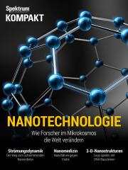 Spektrum Kompakt: Nanotechnologie - Wie Forscher im Mikrokosmos die Welt verändern