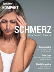 Spektrum Kompakt: Schmerz - Ursachen und Therapie