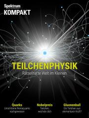Spektrum Kompakt: Teilchenphysik - Rätselhafte Welt im Kleinen