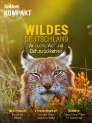 Spektrum Kompakt: Wildes Deutschland - Wo Luchs, Wolf und Elch zurückkehren