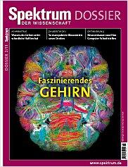 Spektrum der Wissenschaft: Dossier 2/2011 PDF