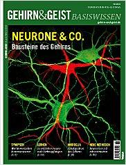 Gehirn&Geist: Basiswissen Teil 4  PDF