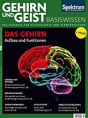 Gehirn&Geist: Basiswissen Teil 2