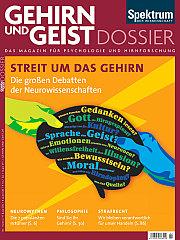 Gehirn&Geist: Dossier 1/2013