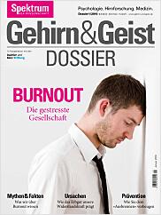 Gehirn&Geist: Dossier 1/2016 EPUB