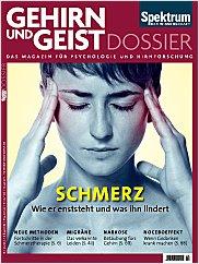 Gehirn&Geist: Dossier 3/2013 PDF